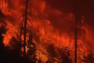 Появилось видео жутких пожаров, охвативших Калифорнию