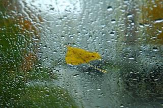 Погода портится: синоптики предупредили украинцев о дождях и похолодании