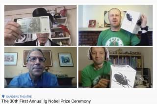 Лауреатами Шнобелевской премии впервые стали украинские ученые. Правда, из Австралии