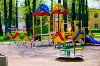 Во Львове рядом с детской площадкой заметили гадюку
