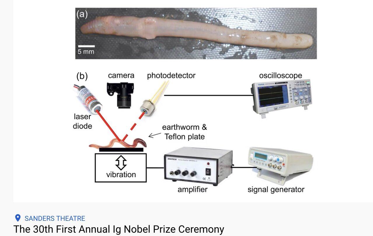 Влияние вибрации на тело дождевого червя
