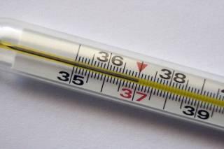 Российский врач заявил, что температура тела 37 градусов – это нормально
