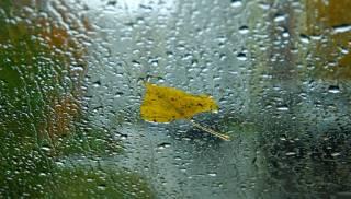 Стало известно, когда в Киеве наконец-то стихнут дожди