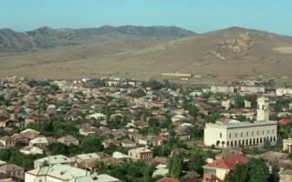 В Грузии дети массово отравились водой