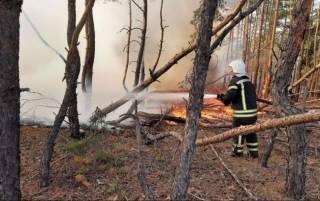 На Луганщине из-за масштабных пожаров уже взрываются снаряды