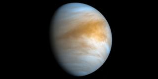 Есть ли жизнь на Венере? Появилось новое доказательство