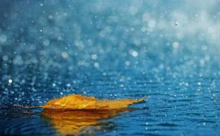 Стало известно, какой будет погода в Украине в первые дни ноября