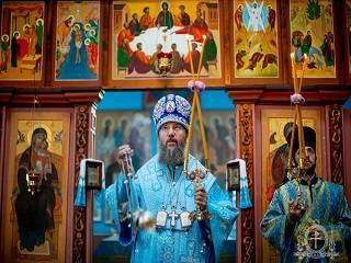 Митрополит Антоний рассказал, как понять, чего Господь ждёт от человека