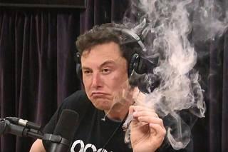 Илон Маск четыре раза сдал тест на коронавирус, но так и не получил результата