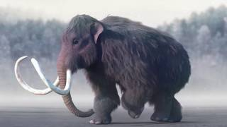 На Ровенщине найдены останки доисторического мамонта