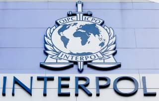 Вакцинация еще не началась, а Интерпол уже предупреждает о подделках