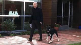 Байден озвучил пикантные подробности своих странных отношений с собакой
