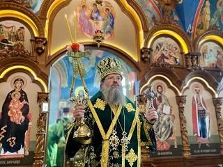 Митрополит УПЦ объяснил, в чем отличие свободы от распущенности