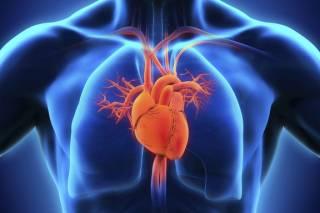 Испанцы придумали очень простой тест, чтобы проверить работу сердца