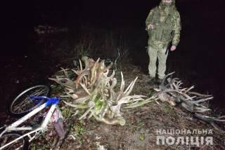 Недалеко от Чернобыля правоохранителя задержали группу рогоносцев-рецидивистов
