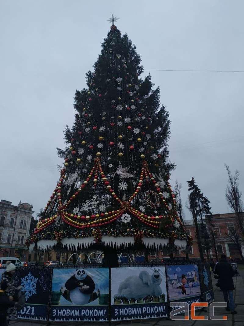 Новогодняя елка в Житомире
