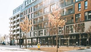 Метры для бизнеса: в чем особенности коммерческой недвижимости от SAGA Development