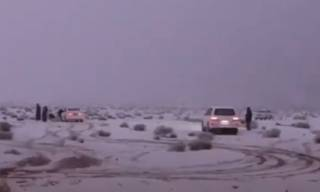 Впечатляющее видео: африканскую пустыню занесло снегом