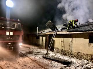 Жертвами пожара на Закарпатье стали десятки свиней и кур