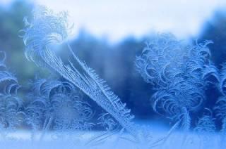 В начале следующей недели в Украине ожидается сильное похолодание