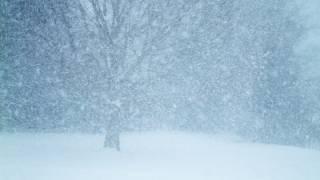 Украину накрыл мощный снежный циклон