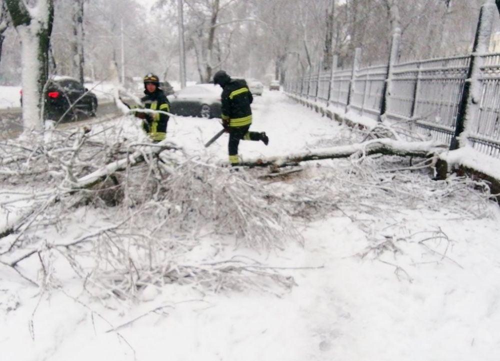 Сотни машин оказались в снежных заторах на дорогах в Одесской области