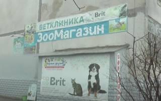 Трагедия в Харькове: в одном из магазинов заживо «сварились» животные и рыбки