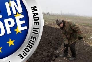 Как европейцы грабят Украину и убивают наше производство