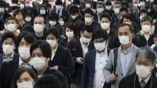 В Японии появилось необычное, но полезное министерство