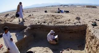 Появились фотографии жуткого древнего кладбища домашних животных в Египте