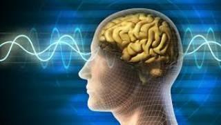 Стало известно, почему стареет наш мозг