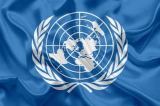 В ООН привели жуткие цифры по голодающим в мире