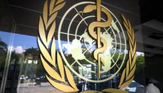 Эксперты ВОЗ назвали основные версии появления коронавируса