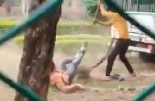 Опубликовано видео нападения леопарда на людей в Индии