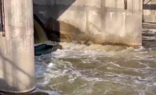 В Полтавской области утонули люди