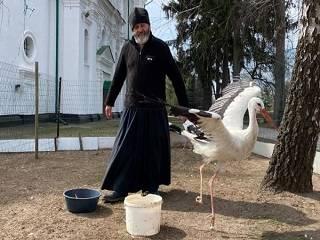 На Полтавщине в монастыре УПЦ рассказали о «птицах-миссионерах»