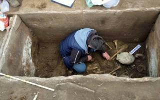 На Тернопольщине раскопали клад возрастом более 5 тысяч лет