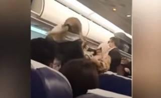 Появилось видео драки на борту самолета в Турции