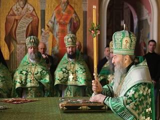 Митрополит Онуфрий рассказал о смысле праздника Входа Господнего в Иерусалим