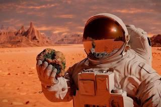 Илон Маск предупредил об опасности полета на Марс