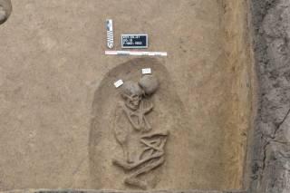 В Египте нашли более сотни древних погребений, забытых на тысячи лет