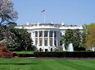 В Белом доме сделали резонансное заявление о вступлении Украины в НАТО