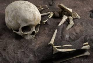 Обнаружено древнейшее человеческое захоронение в Африке