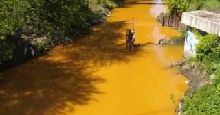 В Киеве река Лыбедь стала ядовито-желтой