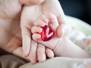 В Международный день семьи в УПЦ будут молиться о мире и благополучии в семьях