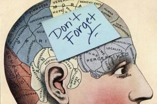 Ученые из Австралии разработали самый эффективный способ запоминания сложной информации