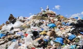 На Закарпатье обнаружили десятки незаконных свалок