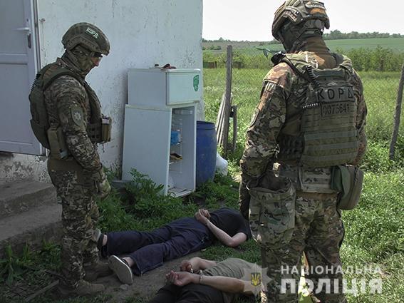 Плантация конопли в Николаевской области