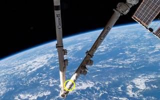 Мелкий кусок космического мусора повредил часть МКС