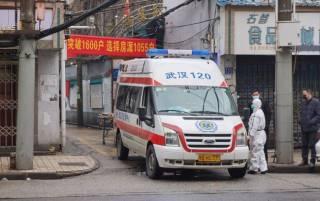 В Китае зафиксирован первый случай заражения новым штаммом птичьего гриппа